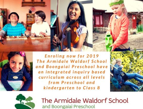 The Armidale Waldorf School – More than an education, its a foundation for life.